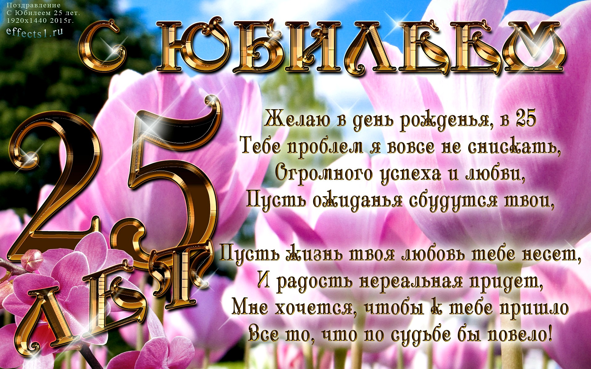 Поздравления с рождением 25 летием
